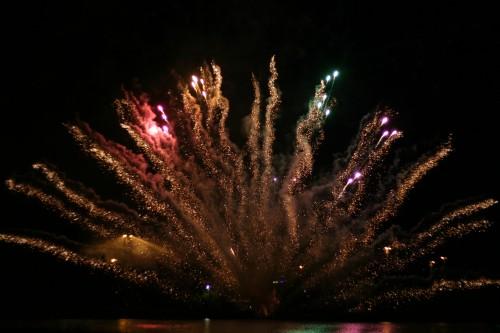 Tarkkamarkka toivottaa hyvää uuttavuotta! (Flickr: 1541)