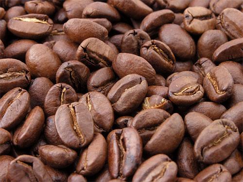 Kahvipapuja. Paljon kahvipapuja.